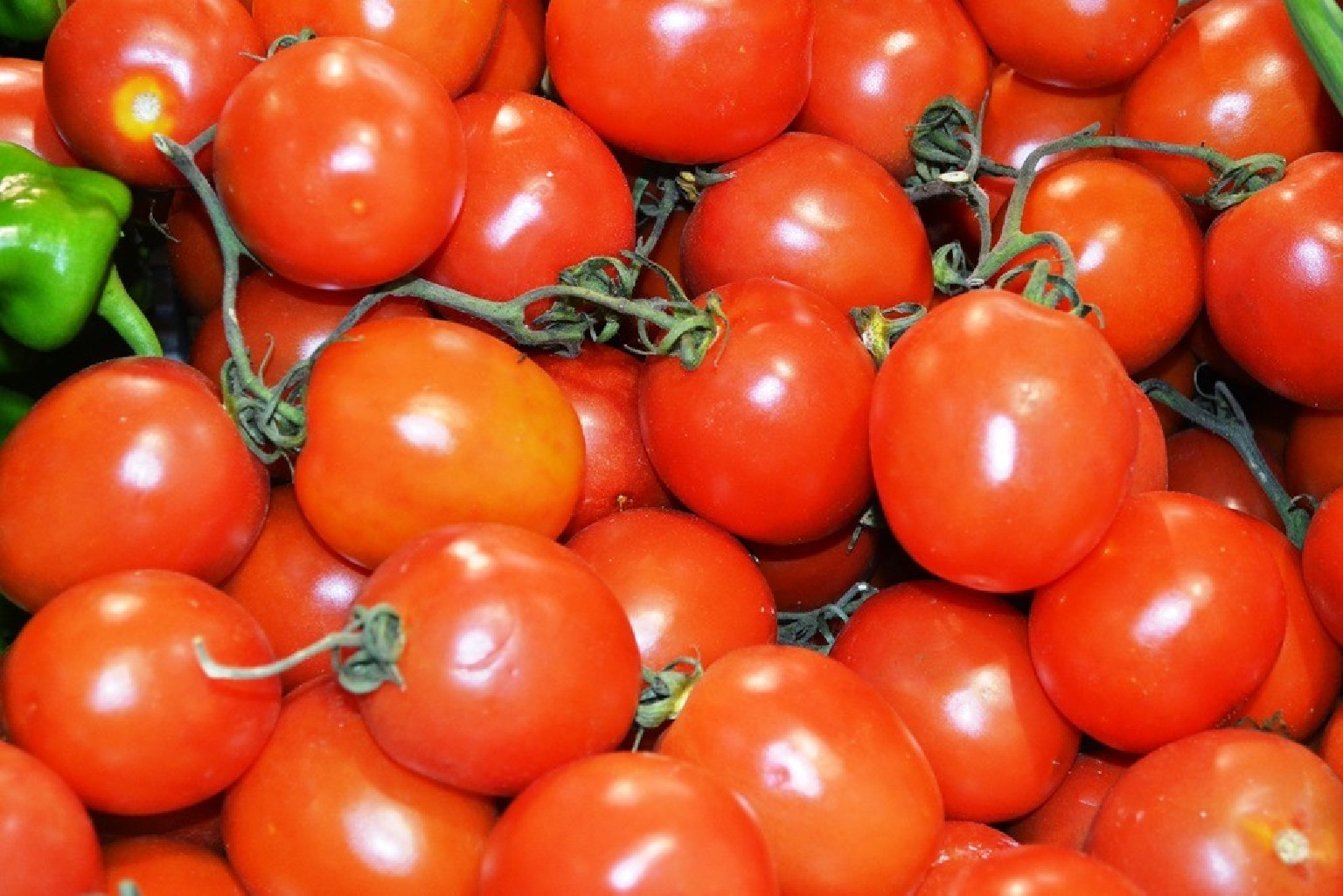 Imagen de Tomate de pera