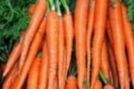 Imagen de Zanahorias de hoja